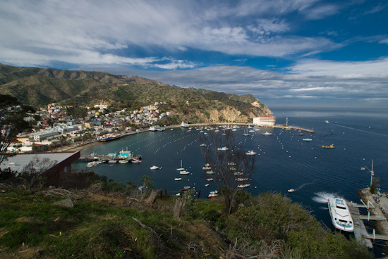 Overlooking Avalon, Catalina Island